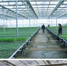 节水灌溉工程相册