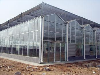 陕西玻璃连栋温室建设